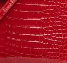 Pelle Crocodile Porosus Matte Hermes Le Chic